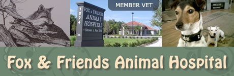 Fox and Friends Animal Hospital
