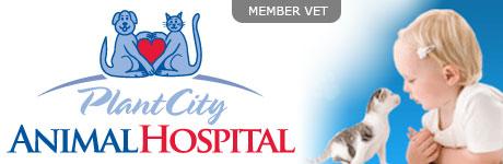 Plant City Animal Hospital